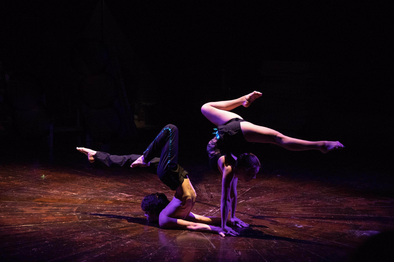 Nestor contortion cover photo