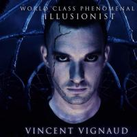 VIGNAUD VINCENT avatar