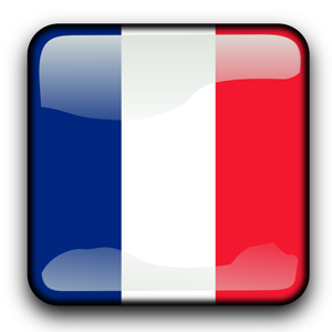 France 40x20 ak 2